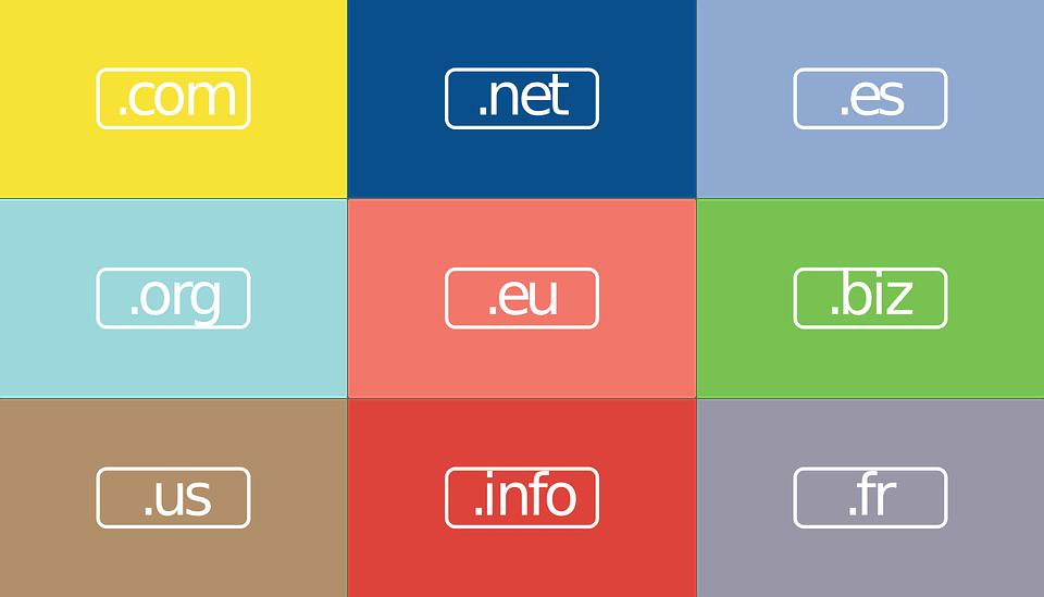 Domain-name-selection